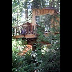 Animal Planet Master Tree House on tree house interior, tree house builders tv show, tree house building plans, tree house hotel washington, tree house brewery, tree house floor plans, the ugliest creatures on planet, tree house friends, tree masters tree houses, tree houses from planet earth discovery,