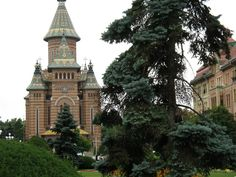 Jurnal de gradina BLOG: Timisoara - Piata Operei