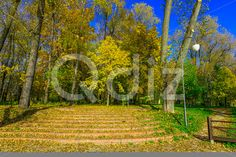 Qdiz Stock Photos | Autumn Scenery with Colorful Trees and Stairs,  #autumn #background #branch #colorful #day #environment #fallen #foliage #footpath #golden #grass #green #ground #lamp #landscape #leaves #lush #multicolored #nature #nobody #outdoor #park #path #pathway #road #scenery #season #sky #stairs #sunny #tranquil #tree #trunk #walkway #way #wood #yellow