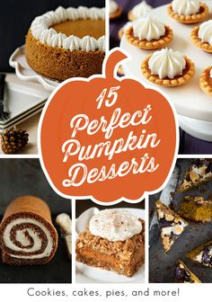 15 Perfect Pumpkin Recipes - Just in time for Thanksgiving on My Baking Addiction