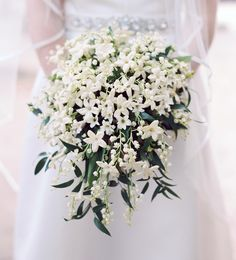 Dont you just love an all-white bouquet? created this delicate bouquet of lily of the valley and stephanotis. Such a classic! Click the link in our bio to see more from this D. White Wedding Bouquets, Bride Bouquets, Flower Bouquet Wedding, Bouvardia Wedding Bouquet, White Flowers Bouquet, Small Flower Bouquet, Purple Bouquets, Small White Flowers, Bridesmaid Bouquets