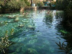 Turkey Thermal Waters