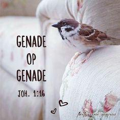 Joh. 1:16