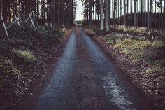 📌 Road path trail street - new photo at Avopix.com    📷 https://avopix.com/photo/46906-road-path-trail-street    #way #road #walk #sidewalk #landscape #avopix #free #photos #public #domain
