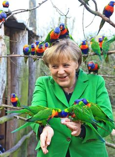 Franzi Zoger / AFP / Getty ImagesGerman Chancellor Angela Merkel is a perfect perch for these lories, or Rainbow Lorikeets, during a visit to Vogelpark Marlow in one of her electoral districts in northern Germany.