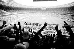 Cruzeiro x Atletico | Loucos pelo GALO
