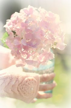 sparkle of lilac