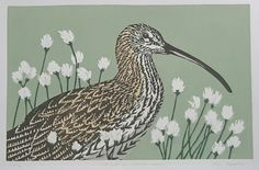 Curlew in Cotton Grass - linocut - John Hatton, U. Birds, Prints, Painting, Grass, Cotton, Animaux, Drawings, Painting Art, Bird
