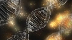 ❝ Descubren 40 genes nuevos relacionados con la inteligencia humana ❞ ↪ Vía: proZesa