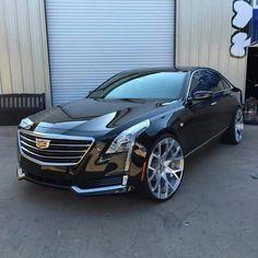 Forgiato Wheels on a 2016 Cadillac Bugatti, Lamborghini, Ferrari, Supercars, Automobile, Cadillac Xts, Mercedez Benz, Sweet Cars, Amazing Cars