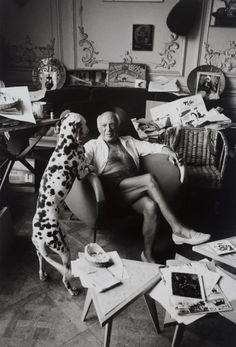Edward Quinn_Picasso mit Dalmatiner.jpg (340×500)