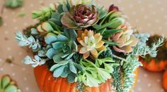 7 Easy Ways to Decorate Pumpkins for Fall