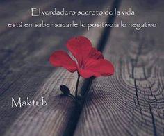 El secreto de la vida