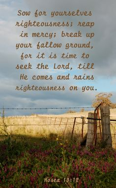 """Hosea 10:12 ~ """"Sow for yourselves righteousness; reap in mercy; break up your fallow ground, for it is time to seek the Lord, till He comes and rains righteousness on you."""" ~ """" ... IT IS TIME TO SEEK THE LORD ..."""""""