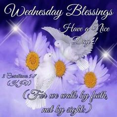 Pinned by sherry decker Wednesday Greetings, Wednesday Hump Day, Wednesday Wishes, Blessed Wednesday, Happy Wednesday Quotes, Good Morning Wednesday, Wednesday Humor, Wonderful Wednesday, Good Morning Happy