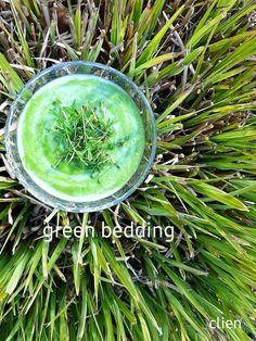 Citroen, peer, spinazie, veldsla, kokosmelk, kurkuma, tuinkers 💚 Green Bedding, Turmeric