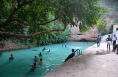 Swimming in Wikki Warm Springs at Yankari National Park