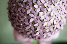 Beautifull topiarie
