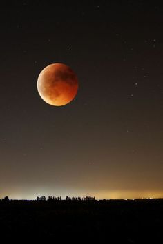 Blood Moon (total eclipse April By Beautiful Moon, Beautiful World, Simply Beautiful, Moon Dance, Shoot The Moon, Sun Moon Stars, Moon Rise, Gods Creation, Science And Nature