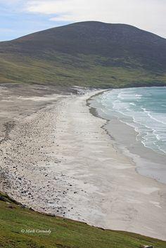 Day 5 - Las Malvinas/Falkland Islands - Day 1 Saunders Island (A Day! Penguin Day, Penguins, Islands, Beach, Water, Blog, Travel, Outdoor, Gripe Water
