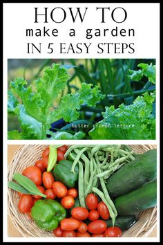 """In our fast paced world, most people like the condensed version. I know I do. I like to get to the facts and """"just tell me what to do"""" part. So I decided to sum up in five easy steps what you need to do to make a garden and start growing your own food. …"""