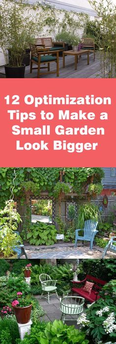 Have a limited space balcony, patio or rooftop garden? Find out how to make a small garden look bigger in this article with these 12 garden optimization tips.