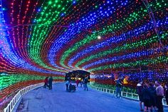 After 2-year absence, Austin's Trail of Lights is back: The family-friendly event featuring almost a million twinkling Christmas lights begins Sunday and continues through Dec. 23. Admission is free.