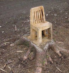 Wooden chair carved right out of the tree stump Wood Projects, Woodworking Projects, Tree Chair, Tree Carving, Log Furniture, Western Furniture, Furniture Design, Outdoor Chairs, Outdoor Decor