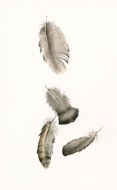 watercolor painting- nature art, feather art,Turkey Feathers No. 2 Archival…
