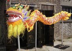 Dragon Dance Costume / Prop Hire