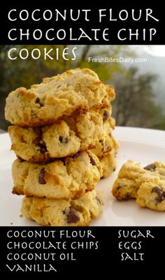 Coconut Flour Chocolate Chip Cookie at FreshBitesDaily.com