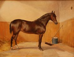 "John Chester Mathews oil painting on board depicting a horse in stable. States ""Commissioned by His Majesty the King"" and dated 1899. This beloved horse is obviously taken well care of: look how its coat shines! Horses were often fed a ratio of grain for an eye-catching gleam. Grain was a very costly feed at that time, reserved for the wealthy. This horse is a bay, showing the darker side of the bay spectrum, with those lively copper highlights often seen in bays."