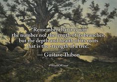 """""""Remember that it is not the number nor the length of its branches, but the depth and health of its roots that is the strength of a tree. Wise Quotes, Inspirational Quotes, Shining Tears, The Magicians Nephew, Westerns, Teresa, Honest Quotes, Attitude, Philosophy Quotes"""