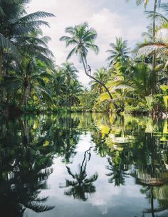 I spent one month living on Siargao and had the adventure of a lifetime. These are the best 30 things to do on Siargao: THE ULTIMATE BUCKET LIST Siargao Philippines, Voyage Philippines, Les Philippines, Philippines Beaches, Philippines Travel, Palawan, Manila, Siargao Island, Vietnam