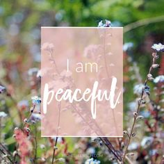 Mantra: I am peaceful. Choose your own Positive Affirmations to download or share.