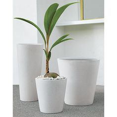 Modern faux-stone planter is handmade from an innovative polystone material that resembles natural limestone—both in looks and durability. Modern conical shape and natural finish blend nicely with any decor. We especially love them in multiples.