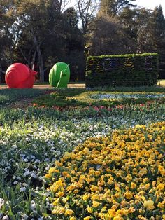 Floriade 2014.   These giant snails next to a floral wall spelling out Floriade are beautifully colourful! |a little bird made me