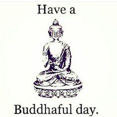 #calm #funnybhudda