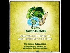 Agroflorestação: outro jeito de fazer agricultura no semi-árido - Parte 1 de 4 - YouTube