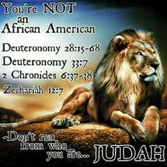 Black Yisrael ~ 12 Negro Tribes♥ The other ten tribes know who they are do you? Black Hebrew Israelites, 12 Tribes Of Israel, Tribe Of Judah, Black History Facts, Bible Knowledge, Bible Truth, New People, Way Of Life, Bible Scriptures