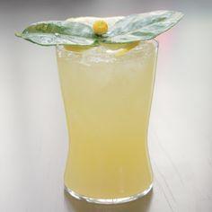I Cocktails: Verbena Cocktail