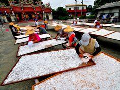 lotus root powder drying, Tainan, South #Taiwan