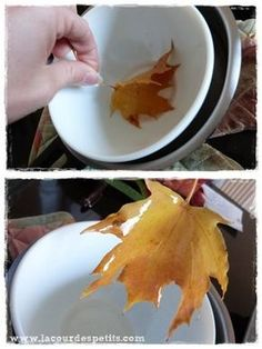 Diy fall crafts 459859811948129095 - feuille automne cire Plus Source by c_castagne Easy Crafts To Make, Fall Crafts For Kids, Wooden Pumpkin Crafts, Plastic Pumpkins, Thanksgiving Diy, Leaf Art, Fall Diy, Autumn Leaves, Fall Decor