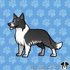 My Border Collie Coco - Cartoonize my pet