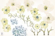 Welcome to GrafikBoutique! This set of high quality hand painted watercolor flower images in steel blue, latte and olive green color palette may be used for: - printed paper stationery