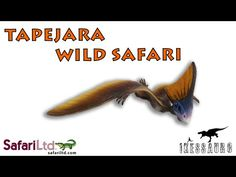 Tapejara Wild Safari