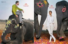 Hermes Spring/Summer 2008 - Art and design inspiration from around the world - CreativeRoots India Gate, Slot Online, Hermes, Elephant, Spring Summer, Design Inspiration, Animals, Painting, Art