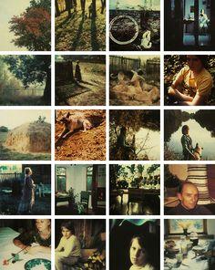 Polaroid by Andrei Tarkovsky from the book Instant Light