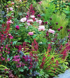 Из роз и травянистых многолетников можно создать композиции невероятной красоты.