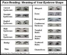 Face Reading: What Your Eyebrow Shape Means Eyebrows = your mental outlook or point of view Even if you pluck, or draw on them, they still reflect the mental outlook that feels right for you. Writing Help, Writing Tips, Writing Resources, Types Of Eyebrows, Eyebrow Types, Nose Types, Chinese Face Reading, Straight Eyebrows, Shape Meaning